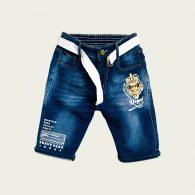 Boys Shorts-5